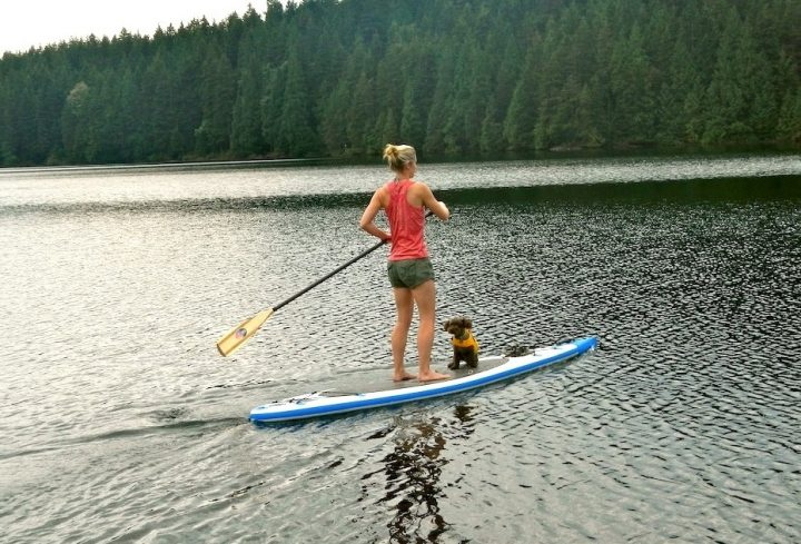 Gain With These 5 Recommendations On Paddleboard Meaning